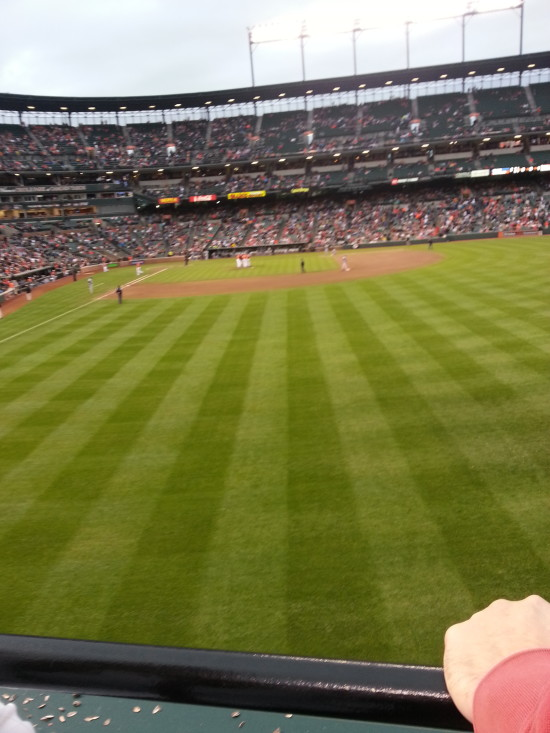 View from Right Field Wall at Camden Yards