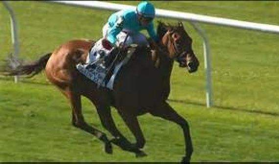Lady Eli (Photo courtesy, againstthenumber.com)